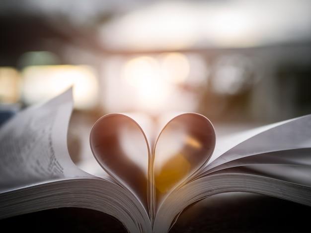 Coração de uma página do livro contra um foco macio do por do sol bonito.