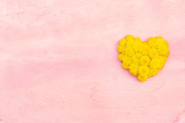 Coração dente de leão na superfície de madeira fundo copyspace cor rosa
