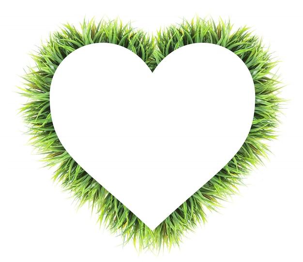 Coração feito de grama isolada no branco