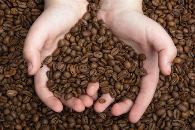 Coração feito de grãos de café. visão concptual. feijões de café frescos do aroma no mãos.