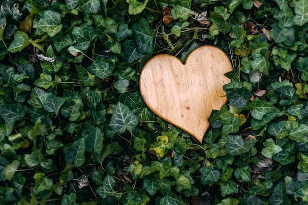 Coração feito de madeira no arbusto