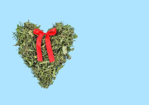 Coração verde feito de grama fresca com fita vermelha sobre fundo pastel azul claro.