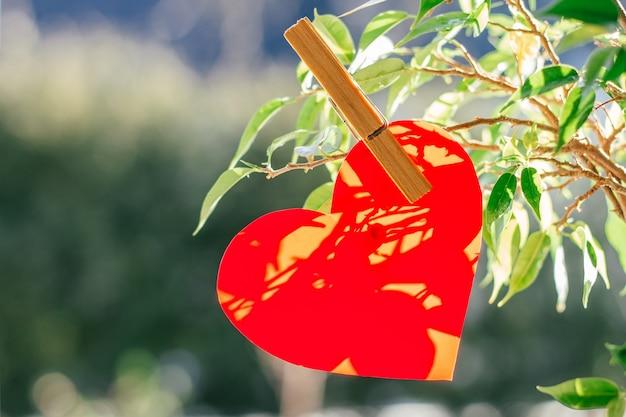 Coração vermelho cortado de papel ou plástico preso com prendedor de roupa ao galho de árvore no fundo do borrão verde com bokeh