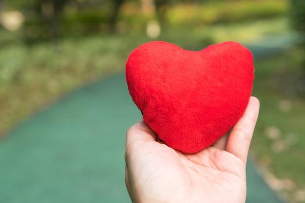 Coração vermelho na mão sobre os fundos de caminho a pé verde com espaço de cópia