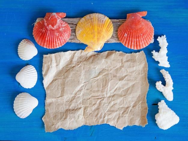 Corais e conchas na parede de madeira azul perto com espaço de cópia em papel