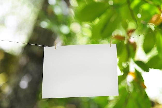 Corda colocada com papel na floresta