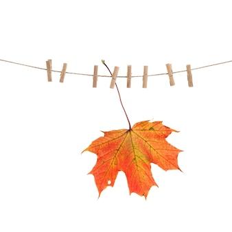 Cordão de roupas outono vermelho maple leaf