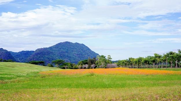 Cordilheira e prado no parque chiang rai de singha, tailândia.