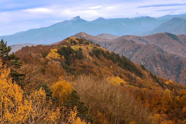 Cores brilhantes de outono nas montanhas do norte do cáucaso