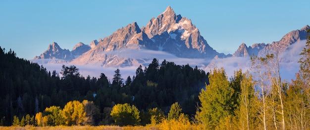 Cores brilhantes do outono no parque nacional de grand teton, wyoming, eua