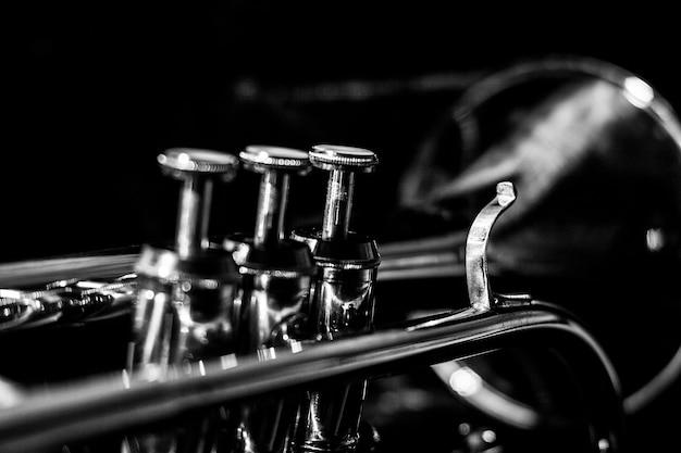 Corneta musical clássica de preto e branco.