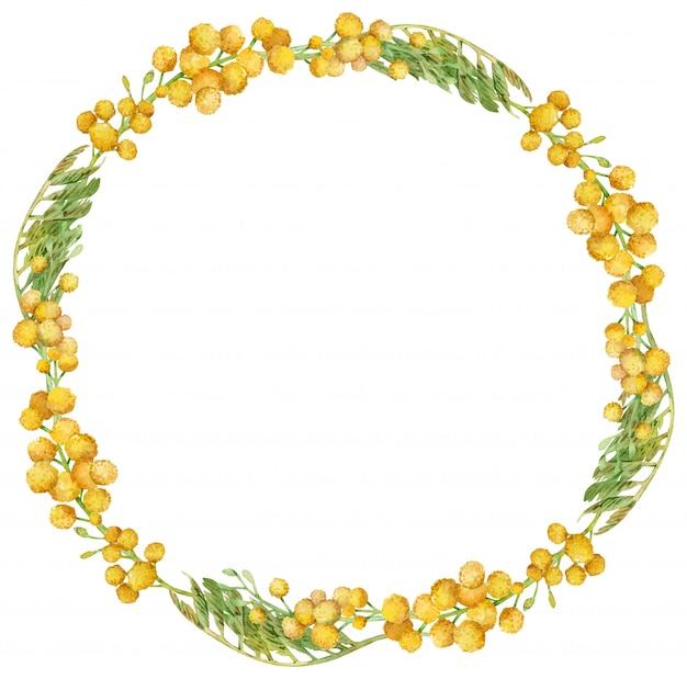 Coroa de flores em aquarela mimosa. quadro floral primavera amarelo. ilustração desenhados à mão.