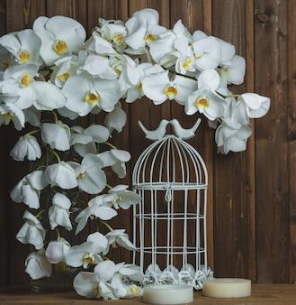 Coroa de orquídea branca e gaiola artificial