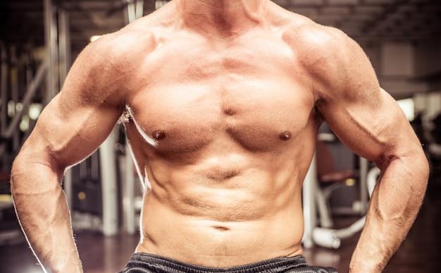 Corpo construtor peito close-up. conceito sobre ginásio, esporte, pessoas e musculação