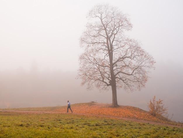 Corredor em um parque de outono nevoento. paisagem mística de manhã com uma árvore no parque