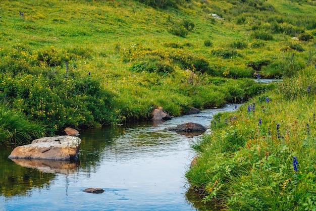 Córrego da água de mola no vale verde no dia ensolarado.