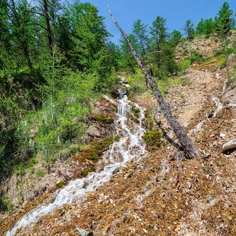 Córrego da cachoeira na encosta de uma montanha ensolarada. cascata nos alpes. as encostas ao redor são cobertas por uma floresta verdejante. cachoeira flui ao longo de uma encosta muito íngreme. dia ensolarado e brilhante.