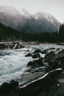 Córrego da montanha de fluxo rápido