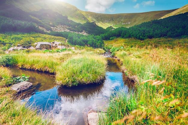 Córrego da montanha de manhã