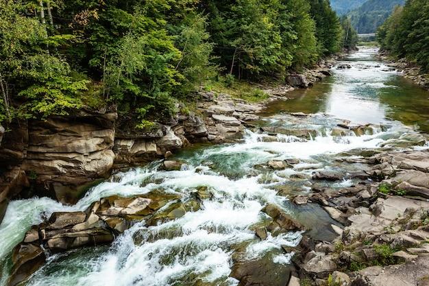 Córrego tempestuoso do rio da montanha entre pedras e árvores