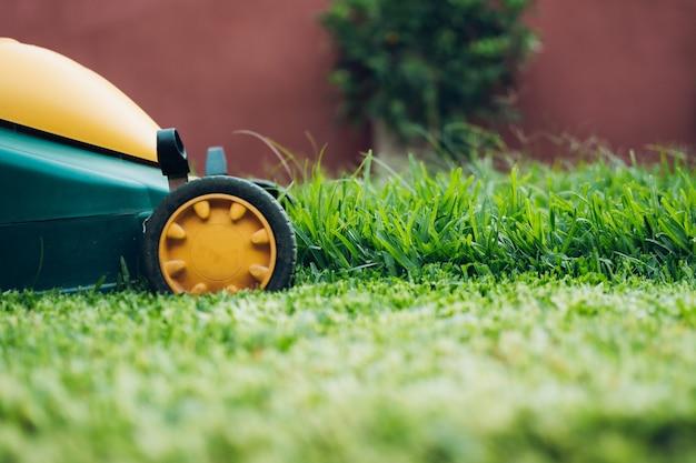 Cortador de grama verde cortando grama