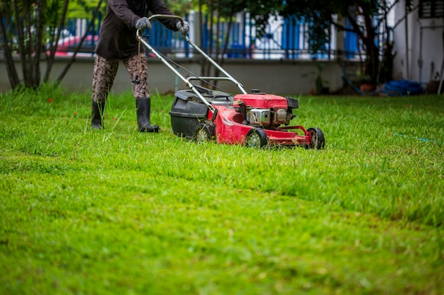 Cortador de grama vermelho cortando grama. fundo do conceito de jardinagem