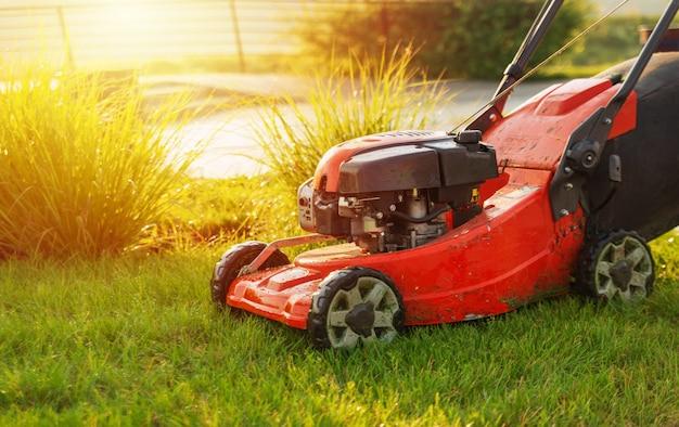 Cortador de grama vermelho na grama verde em um dia ensolarado. cortar a grama
