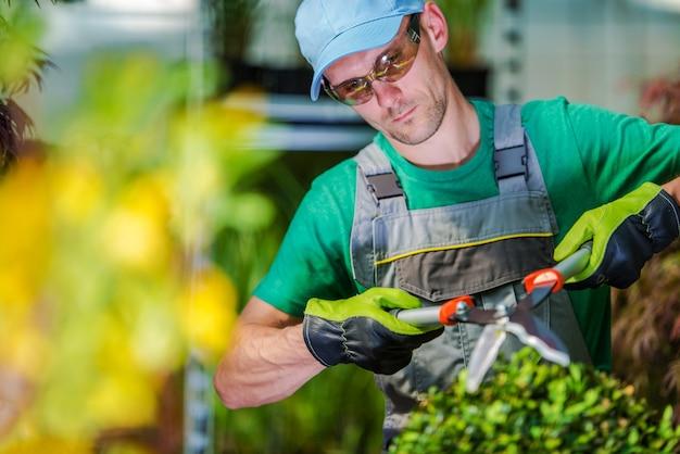 Cortando plantas de jardim