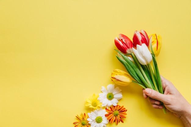 Cortar a pessoa segurando pilha de tulipas