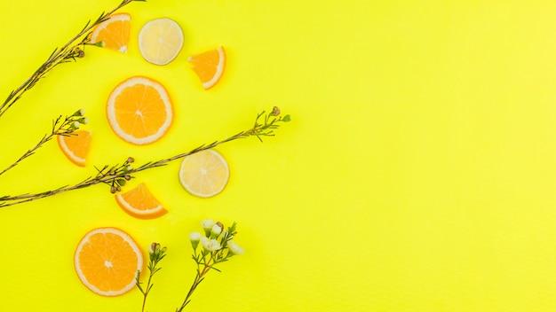 Cortar frutas cítricas e flores no fundo brilhante