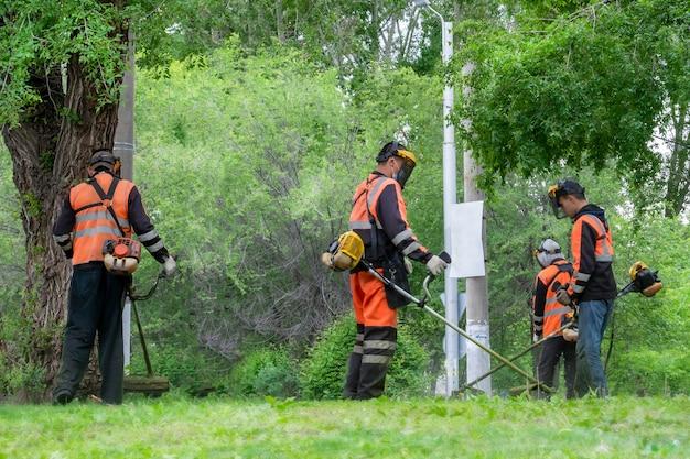 Cortar grama e gramados. três trabalhadores cortam gramados com cortadores de grama no parque.