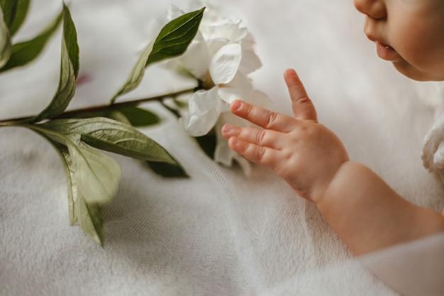 Corte a vista do rosto e a mão do bebê fofo caucasiano com a peônia branca macia deitada sobre o cobertor branco