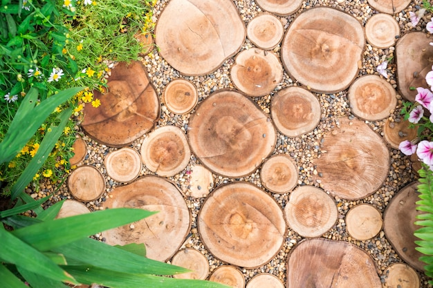 Corte de troncos, caminho, jardim decorativo