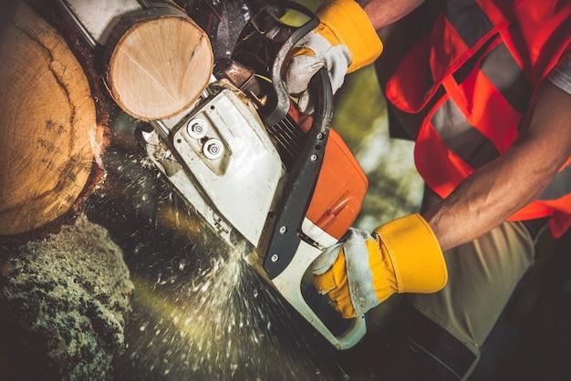 Corte de troncos de madeira de serra de gasolina cortada