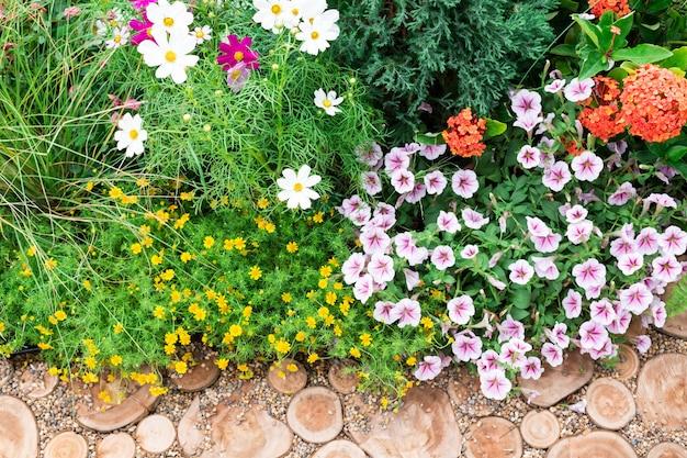 Corte logs, caminho, jardim decorativo