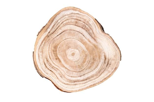 Corte transversal de madeira isolado no branco, tiro do estúdio. vitrine de prêmios para produtos cosméticos. pedestal ecológico orgânico natural. tronco de árvore mostrando anéis de crescimento. maquete de anúncio de produto