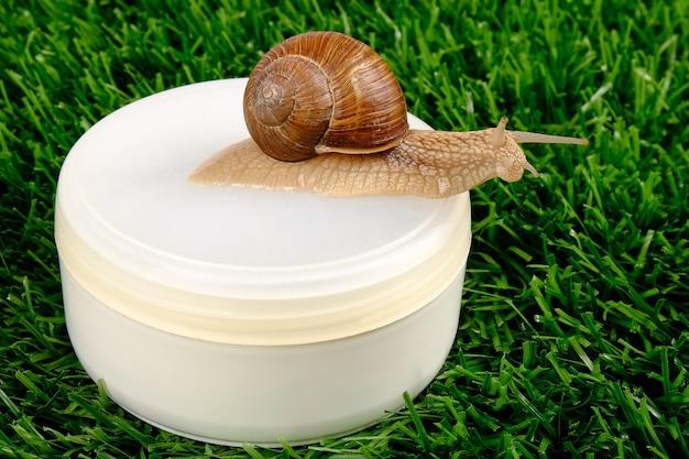 Cosméticos de caracol na grama verde, produtos de beleza para a pele.