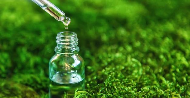Cosméticos em uma garrafa e óleos essenciais em musgo. spa natural. foco seletivo. natureza.