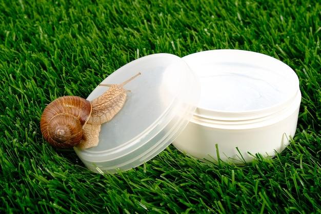 Cosméticos para caracóis, produtos de beleza para os cuidados da pele.