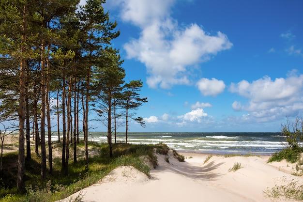 Costa do mar báltico na letônia