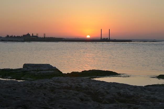 Costa do mar cáspio com uma planta em uma noite de verão ao pôr do sol
