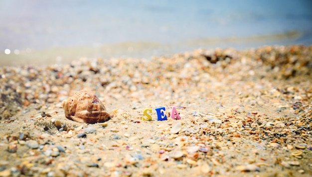 Costa do mar de conchas e o mar de inscrição