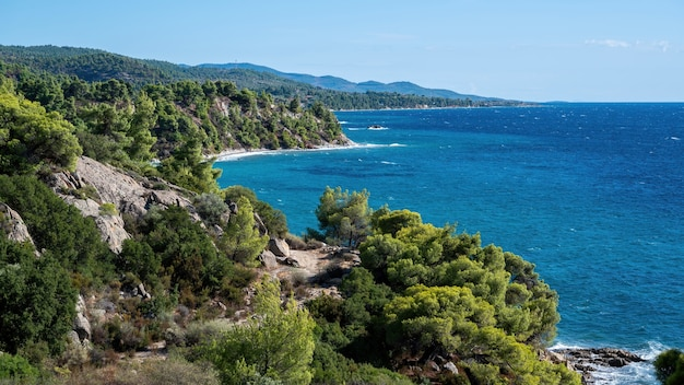 Costa do mar egeu da grécia, colinas rochosas com árvores e arbustos em crescimento, grande extensão de água
