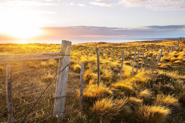 Costa do oceano pacífico ao longo da carretera austral, patagônia, chile
