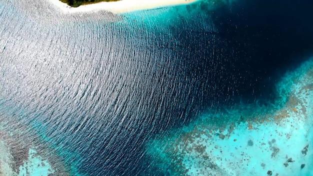 Costa do oceano, palmeiras, areia, ondas, verão