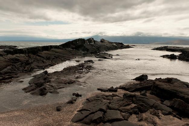 Costa rochosa, em, punta, espinoza, fernandina, ilha, ilhas galapagos, equador