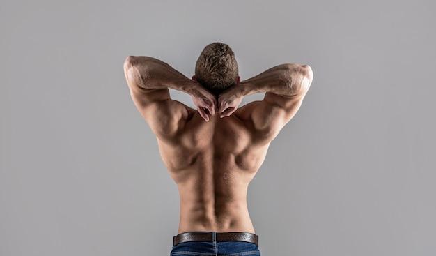 Costas musculosas, homem musculoso, costas musculosas, torso nu. cara de músculos nus, saudáveis masculinos, homem de torso, isolado. homem com braços musculosos, tríceps. cintura, cintura. cara com lindo torso.
