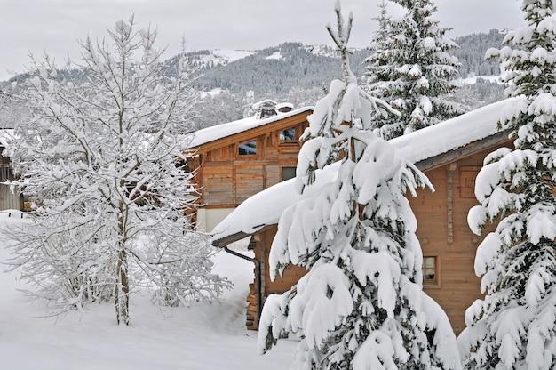 Cottage na neve