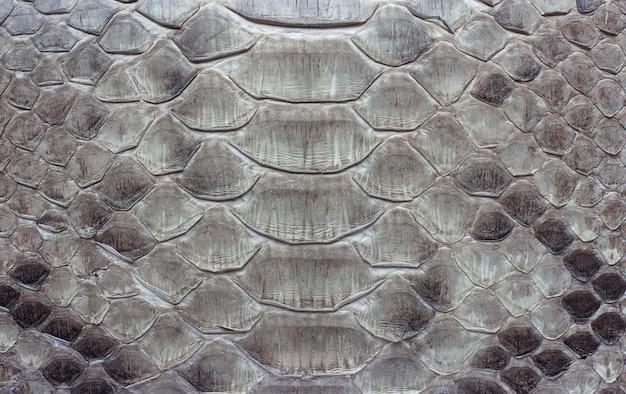 Couro de cobra como pano de fundo ou textura.
