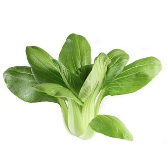 Couve chinesa verde fresca, bok choy, pok choi ou pak choi, isolado no branco